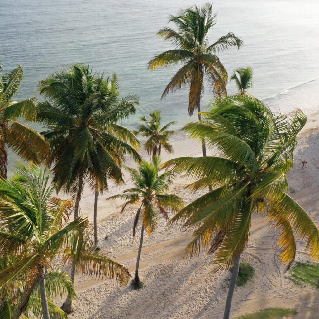 playa privada todoblanco